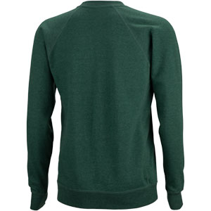 Green throwback crewneck sweatshirt on a white background back view, 2 of 2